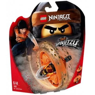 LEGO® NINJAGO® Cole – Spinjitzu Master 70637