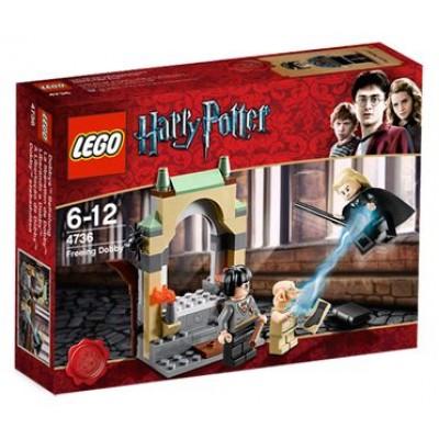 LEGO® Harry Potter™ Freeing Dobby™ 4736